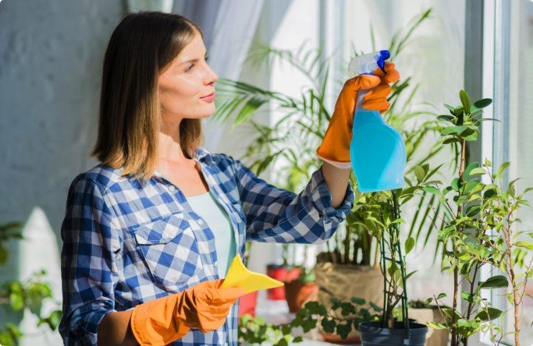 young-woman-holding-yellow-napkin-spraying-window-glass